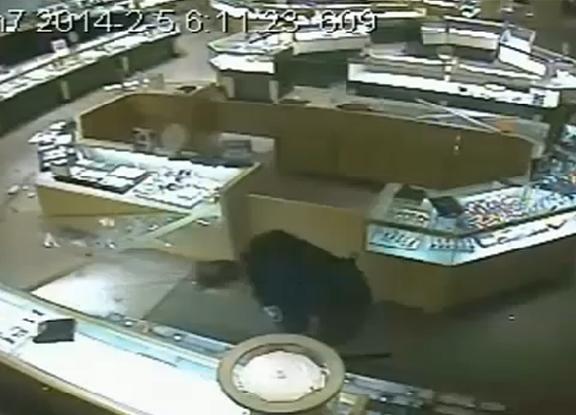 thief-cop-article
