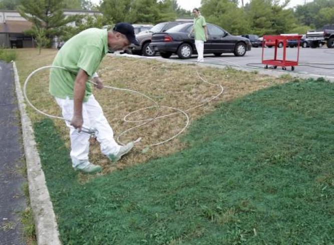 Los Angeles Residents Painting Their Grass Green During Drought