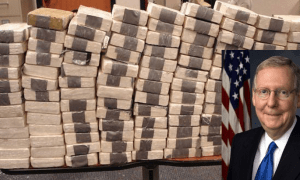 90 Pounds Of Cocaine Found On Cargo Ship Owned By Anti-Drug Republican Senator's Family Mitch Mc Mc Connell