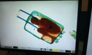 Spanish Woman Tried To Smuggle 8 Year-Old Boy In Suitcase