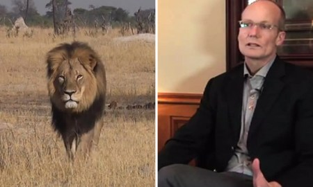 Dentist Has Returned To Work After Killing Cecil The Lion; Where Is The Outrage?