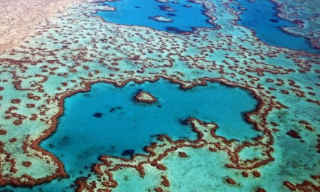 The Great Barrier Reef Off Of The Queensland Austrailia Is Dead At 25 Million Years