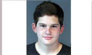 Young Man Drives His Car Head On Into Protesters Pleads Guilty, Gets No Jail Time