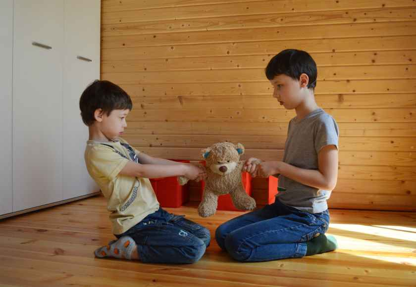 arguing brothers pulling soft toy to sides