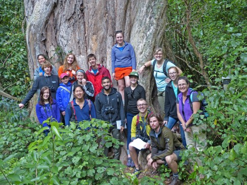 We also saw Rātā trees which were quite large. We learned that they actually start as a vine, and grow down to eventually encompass the tree it grows on. We also saw Rātānui which the biggest Rātā tree in the North Island. Here, the group is pictured at the base of Rātānui.