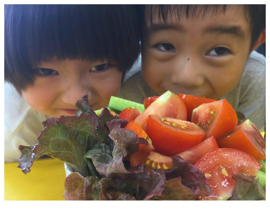 園でとれたフレッシュな野菜