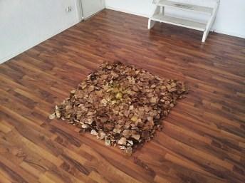 Laupteppich im hinteren Raum