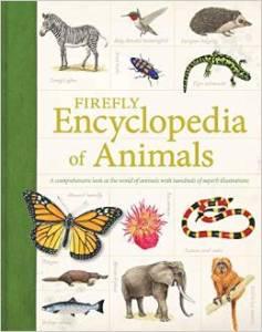 Firefly Animals