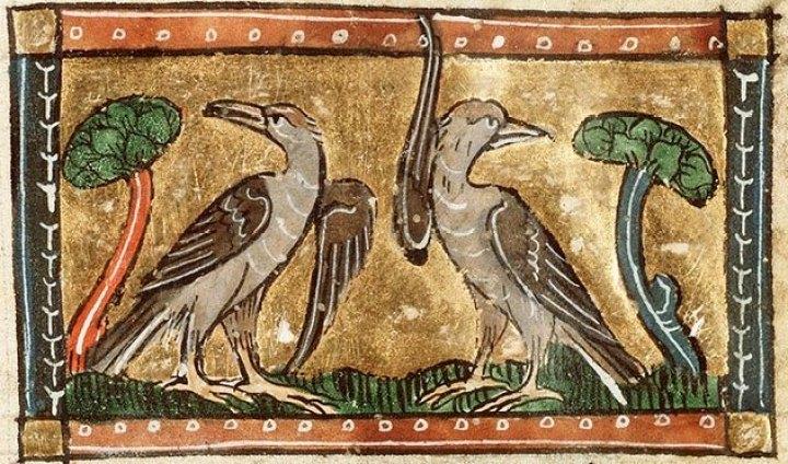 Cuckoo, cuckoo, well sing you, cuckoo …