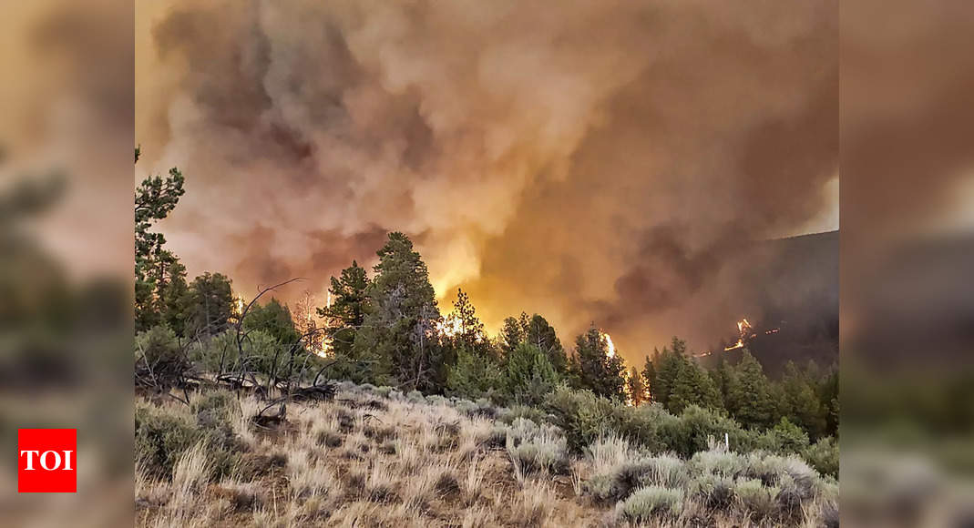 Sprawling Oregon wildfire, largest of dozens in US, continues to grow