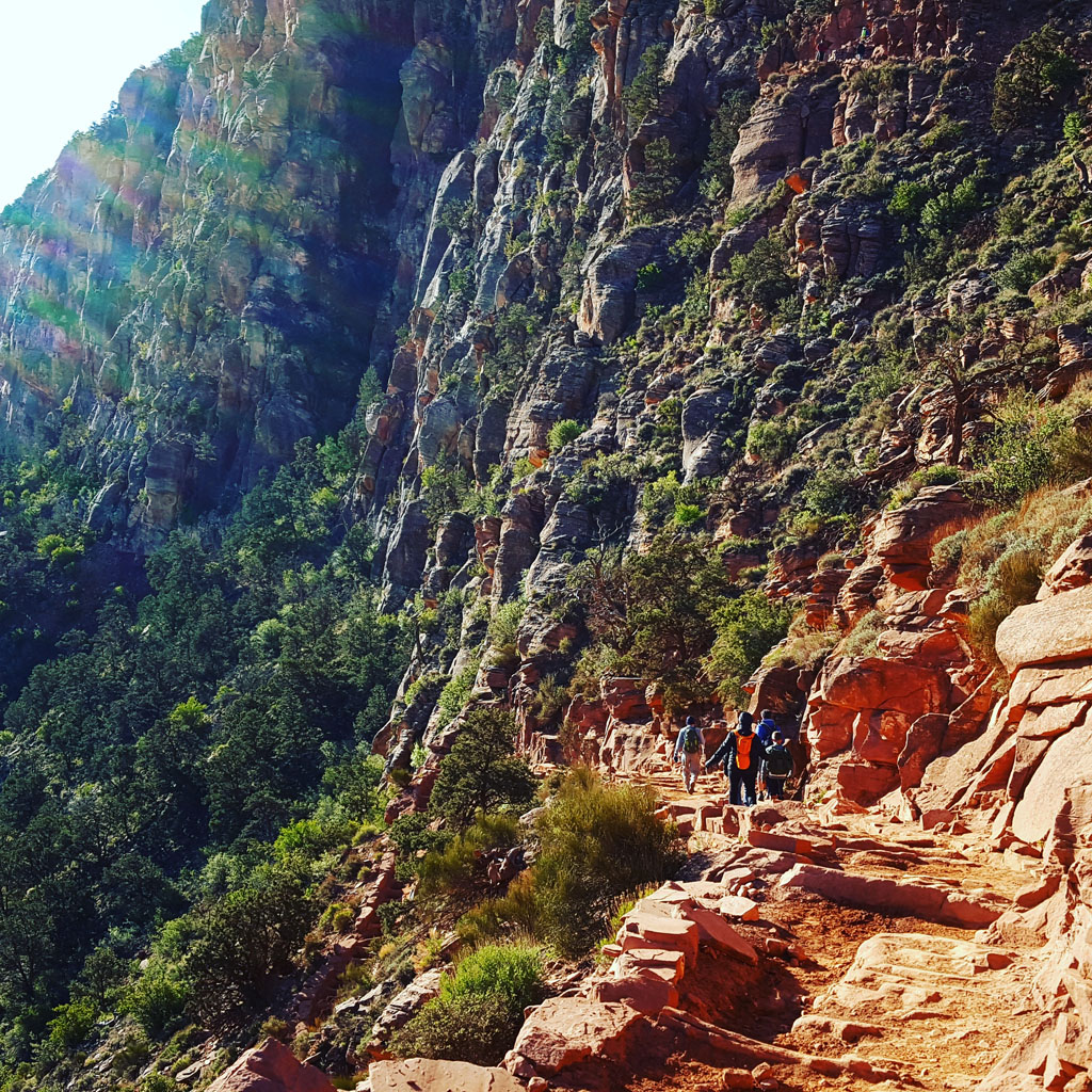 The Beauty of South Kaibab in April