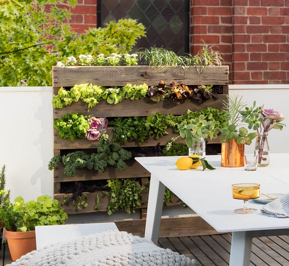 Turn your terrace into a French courtyard garden with a pallet garden