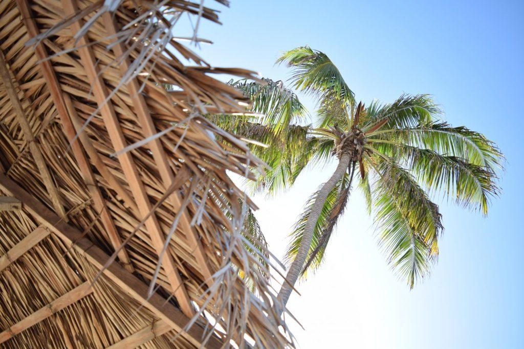 Tropical villa decorating ideas