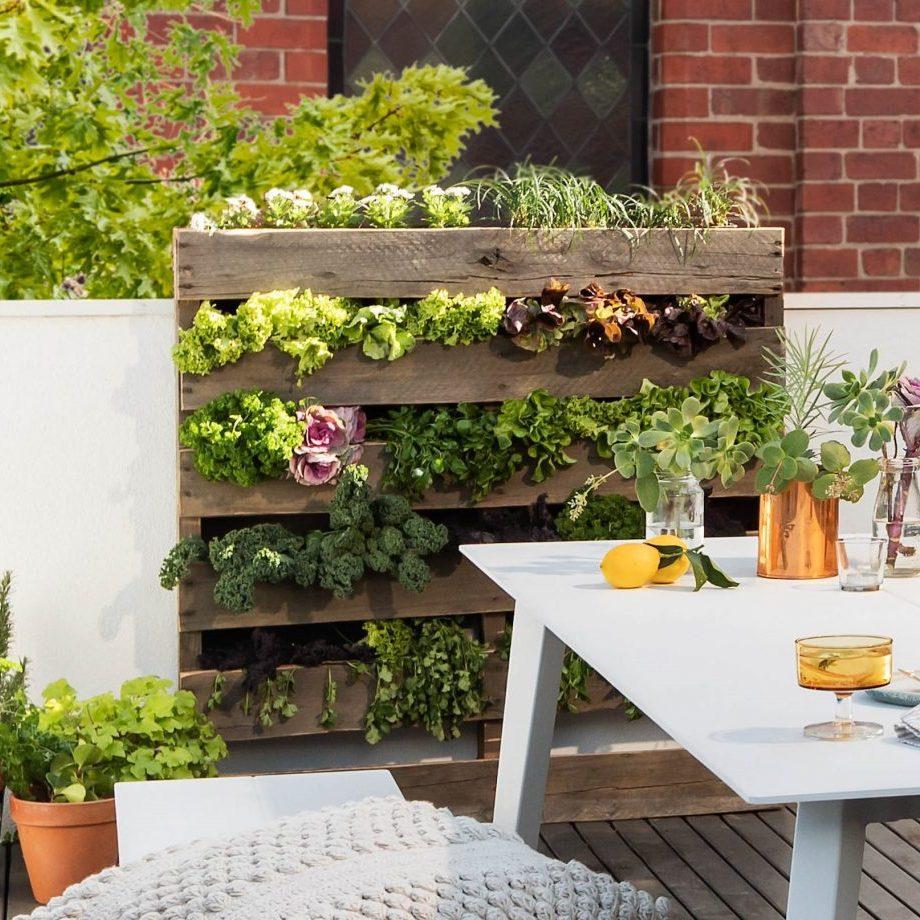 Turn Your Petite Patio into a Parisian Courtyard with a veggie garden