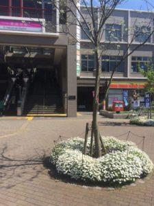 iPhone6s,画面割れ,船橋市,習志野,北習志野,新京成