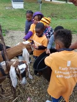 Preschool Pumpkin Field Trip 3