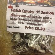 Polish Cavalry 1st section dismounted