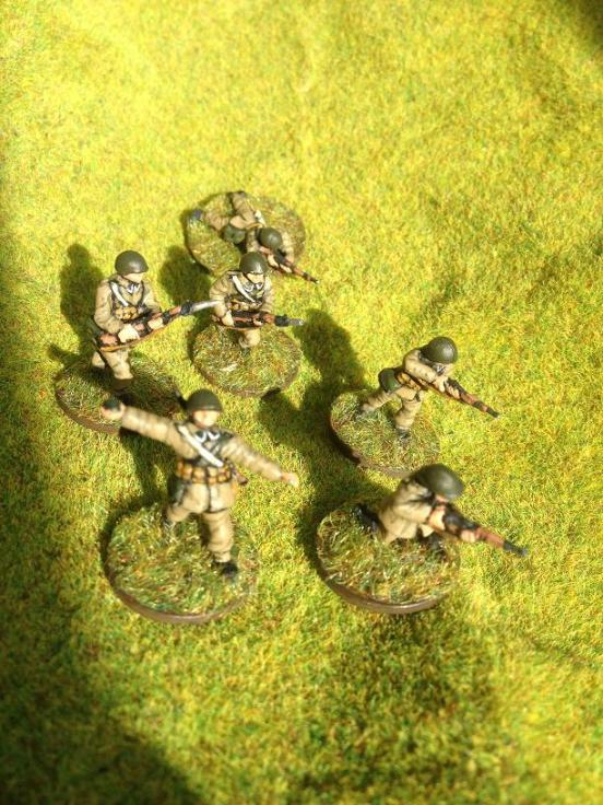 Polish 11 man Infantry section. 10 riflemen and 1 BAR LMG.