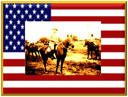 Philipean Scouts & Cavalry