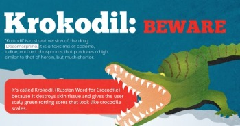 thumbnail image of Krokodil infographic