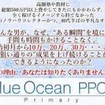 ブルーオーシャンPPCプラス プライマリー 久保 裕樹 の評判