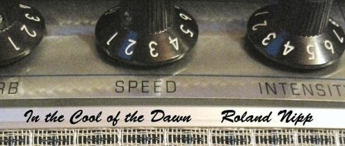 Roland Nipp proves himself a Satch-style melody master with In the Cool of the Dawn