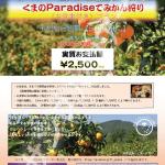 もっと観光みえVer3<サンプルツアー> 30 熊野 くまのParadiseでみかん狩り