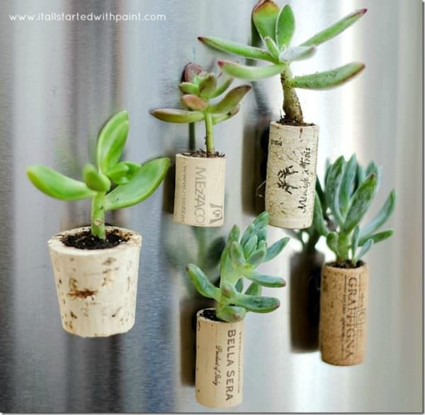 wine cork magnet miniature planters