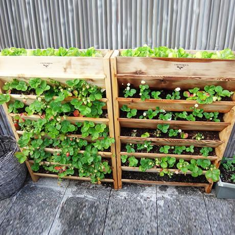 pallet planter vertical garden Creative Ways to Reuse Wooden Pallets in Your Home