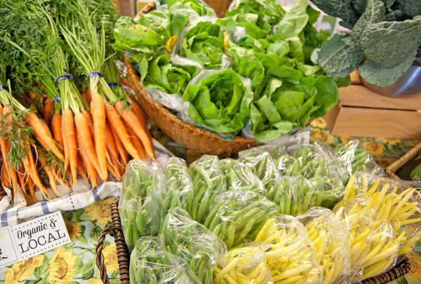 organic food - green grocery