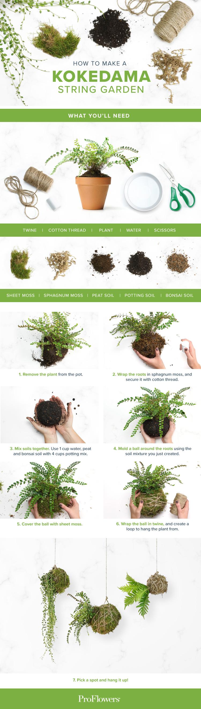 How to make a Kokedama string garden infographic