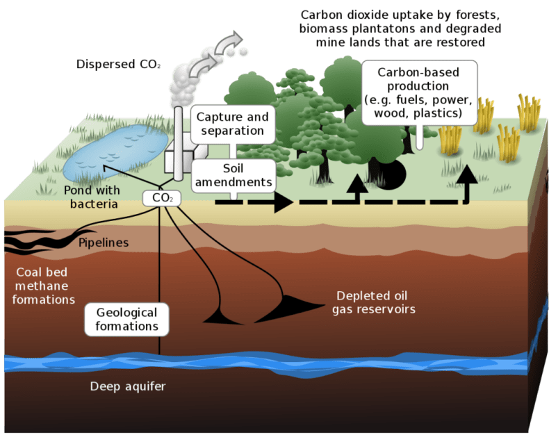 Schematic showing both terrestrial and geological carbon sequestration