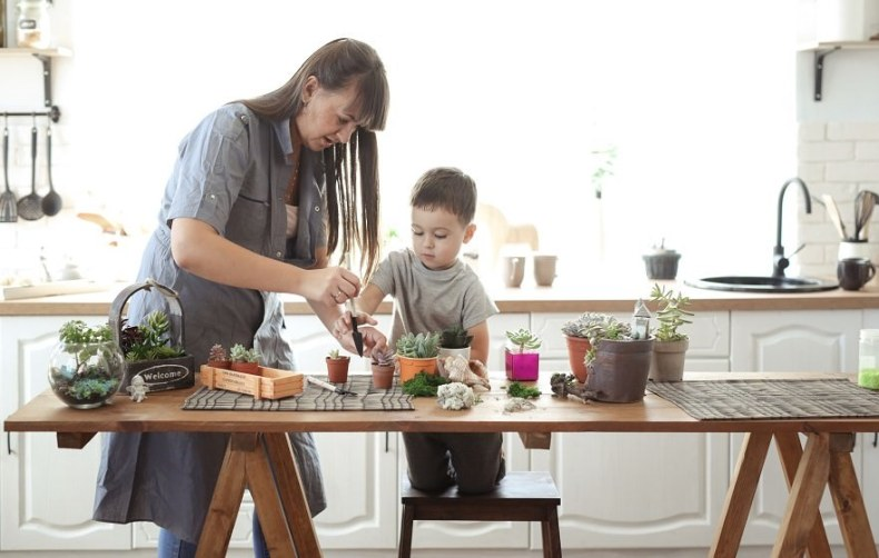 mother and son transplanting plants on kitchen table