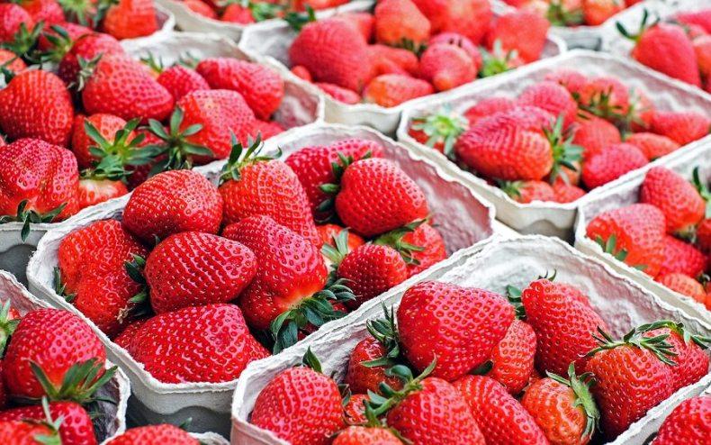 fresh berries on display in market