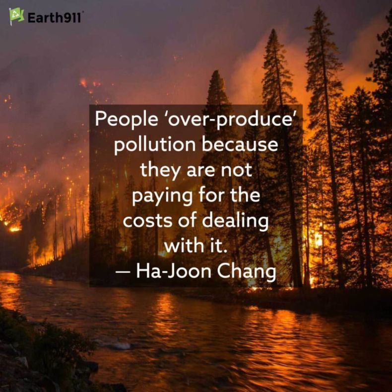 Ha-Joon Chang quote on the costs of dealing with pollution.
