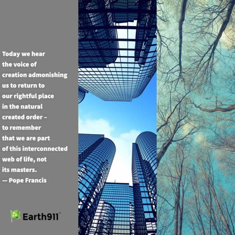 """Pope Francis reminder """"that we are part of this interconnected web of life"""""""