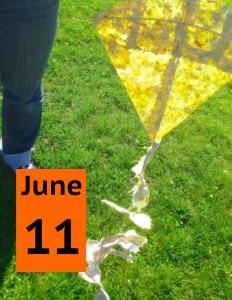 Newsletter June 11 Soil to Sky copy