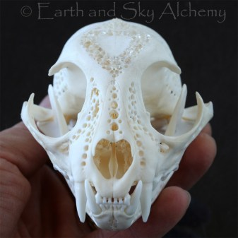 Hand Carved Bobcat Skull with Herkimer Diamonds 01