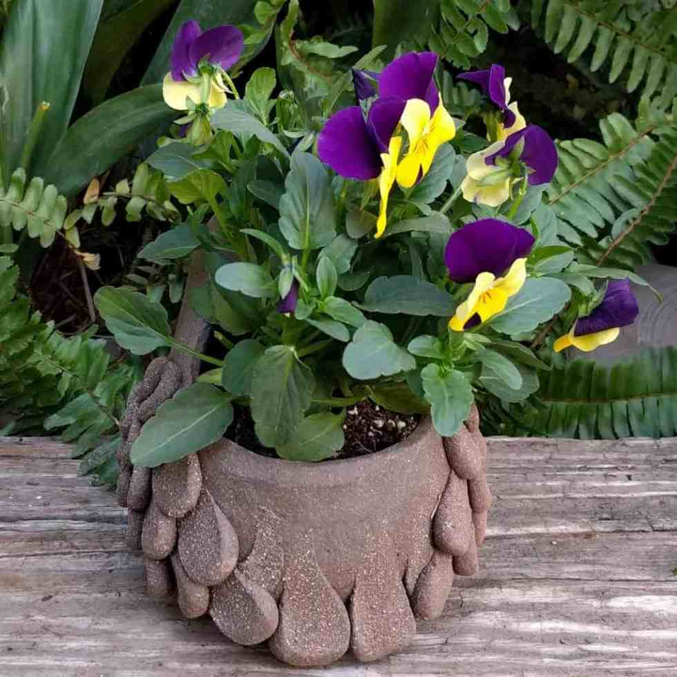 quail_planter_young_small_green_1024_11