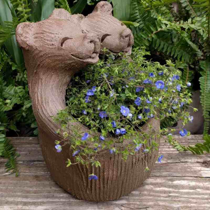 bear_lovers_planter_flowers_greenspace_9