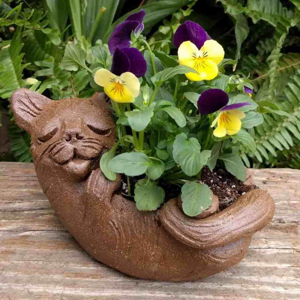 cat_back_planter_flowers_greenspace_3