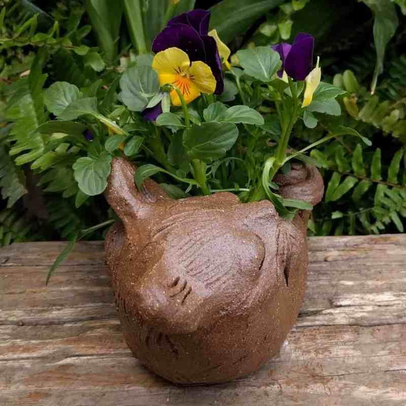 cat_back_planter_flowers_greenspace_6