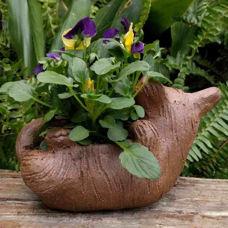cat_back_planter_flowers_greenspace_7