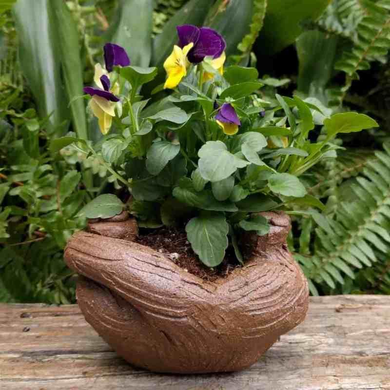 cat_back_planter_flowers_greenspace_8