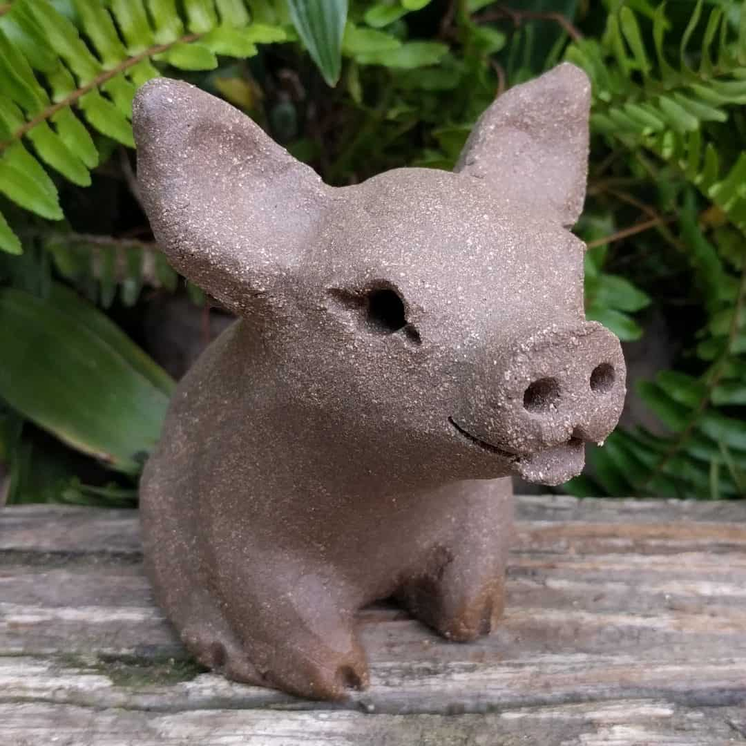 small_pig_outside_13