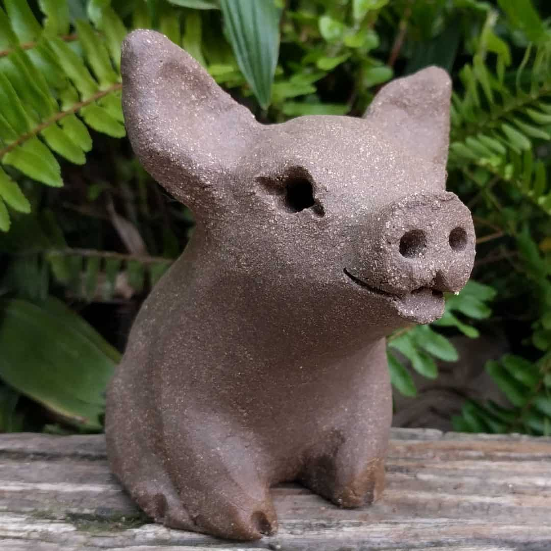 small_pig_outside_14