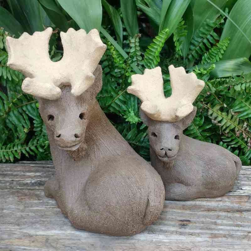 moose-pair-1-1