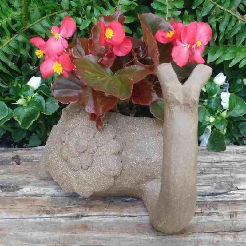 snail-planter-2