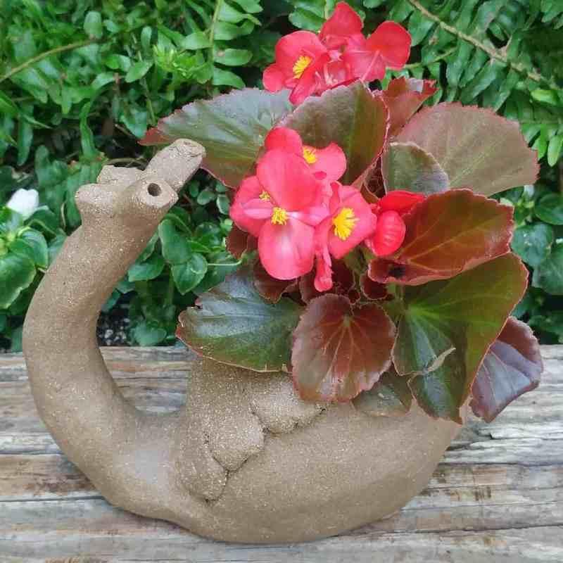 snail-planter-6