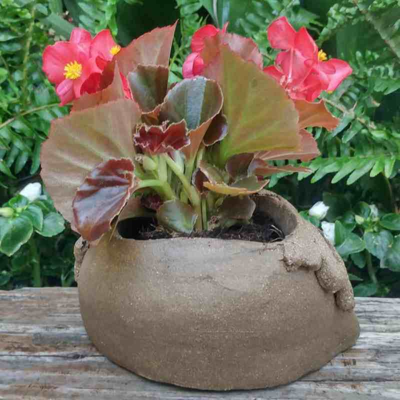 snail-planter-7